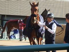 20181228 中山2R 2歳牝馬未勝利 パーフェクトワン 20