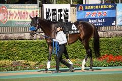 20191102 東京9R 南武特別(2勝クラス) ミッキーバード 09