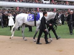 20151227 中山10R 有馬記念(G1) ゴールドシップ 08