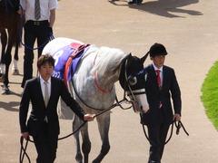 20140504 京都11R 天皇賞春 ゴールドシップ 07