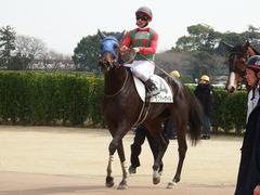 20180318 中山1R 3歳牝馬未勝利 ラプターゲイル 15