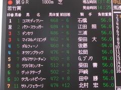 20140126 中山9R オウケンブラック 01