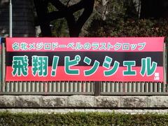 20190126 東京5R 3歳未勝利 ピンシェル 01