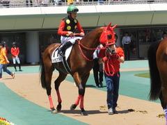 20170520 東京2R 3歳未勝利 パイオニアワーク 15