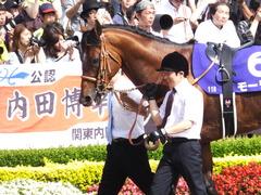20150607 東京11R 安田記念(G1) モーリス 05