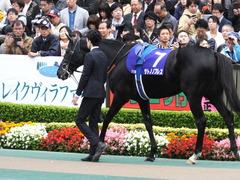 20161030 東京11R 天皇賞・秋(G1) サトノノブレス 10