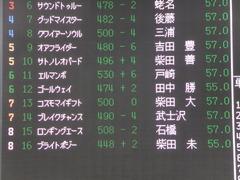 20140419 中山12R ゴールウェイ 01
