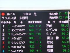20150125 中山5R 3歳未勝利 トーセンカナロア 01