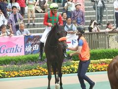20190601 東京7R 3歳牝馬1勝 ラプターゲイル 09