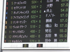 20141011 東京8R ヴィルトグラーフ 01