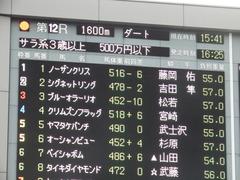 20181008 東京12R (500) ノーザンクリス 01