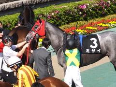 20170430 東京11R スイートピーS 3歳牝馬OP ミザイ 11