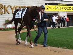 20151121京都2R 2歳未勝利 メイショウノボサン 05