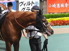 20150530 東京10R 薫風S ランドマーキュリー 04