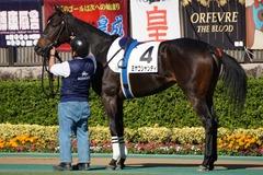 20191110 東京2R 2歳牝馬未勝利 ミヤコシャンティ 12