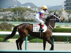 20180331 阪神3R 3歳未勝利 テンノカガヤキ 18