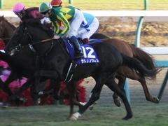 20161225 中山12R 有馬記念(G1) サトノノブレス 10