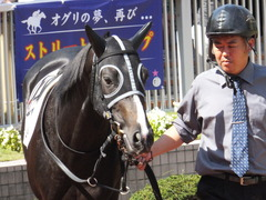 20140928 新潟4R ファインライナー 04