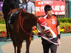 20170429 東京9R 秩父特別(1000) レーヌドブリエ 09
