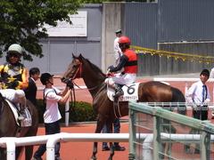 20170603 阪神3R 3歳未勝利 フェアチャイルド 32