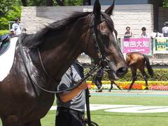 20170520 東京4R 3歳未勝利 ファインパープル 08
