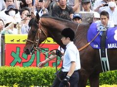 20160605 東京11R 安田記念(G1) モーリス 06