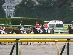 20140621 東京4R トマトリコピン 12