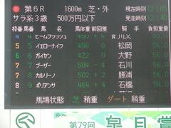 20190331 中山6R 3歳500万下 ポリアンサ 01