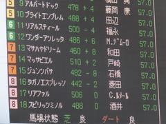 20151025 京都11R 菊花賞(G1) マッサビエル 02