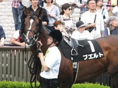 20160528 東京9R 富嶽賞(1000) プエルト 07
