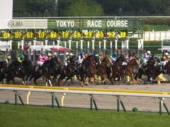 20140525 東京12R 丹沢S ユーロビート 15