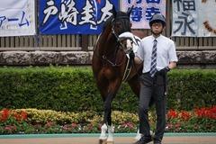 20191103 東京9R 3歳上2勝クラス ロジスカーレット 11