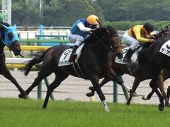 20170507 東京6R 3歳(500) アドマイヤシナイ 18