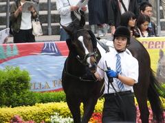 20160605 東京4R 3歳未勝利 ツボミ 07