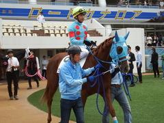 20180922 中山2R 2歳牝馬未勝利 ヴァルドワーズ 11