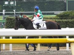 20161027 東京3R 2歳未勝利 パリンジェネシス 16