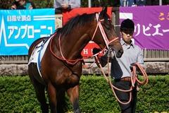 20191026 東京3R 2歳未勝利 ベイサイドブルー 09