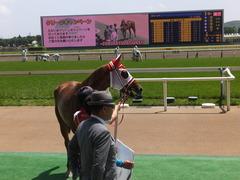 20150510 東京5R 3歳未勝利 レーヌドブリエ 25