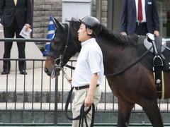 20161023 東京9R くるみ賞 2歳500万下 コウソクストレート 07