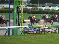 20140419 中山12R ゴールウェイ 11