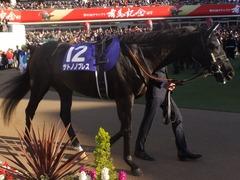 20161225 中山12R 有馬記念(G1) サトノノブレス 04
