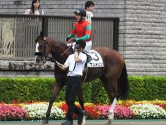 20170625 東京1R 3歳牝馬未勝利 プンメリン 22