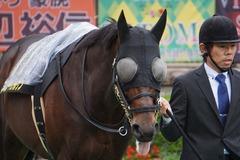 20191123 東京11R キャピタルS(L) プロディガルサン 08