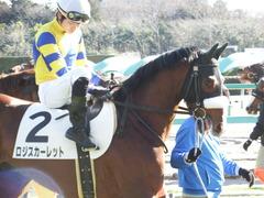 20171228 中山3R 2歳未勝利 ロジスカーレット 14