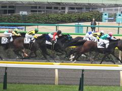 20160130 東京3R 3歳未勝利 アイルーロス 15