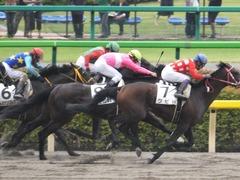20150614 東京3R 3歳未勝利 コスモポッポ 13