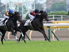 20190608 東京6R 3歳牝馬未勝利 ホウオウヒミコ 19
