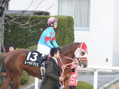 20170114 京都10R 北大路特別 4歳上牝馬1000万下 レーヌドブリエ 18