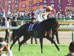20181028 東京11R 天皇賞秋(G1) ミッキーロケット 09