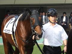 20141026 東京1R トーセンカナロア 06